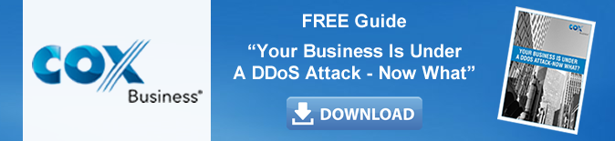 cta_ddos_attack_free_guide.fw.png