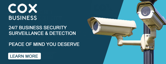 Business Security Cameras and Surveillance